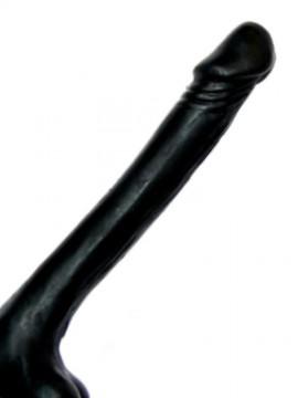 Derek • Regular Cock